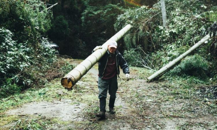 竹を運ぶ切り子さん