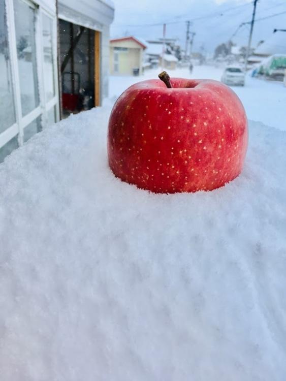 雪山にリンゴを置いた